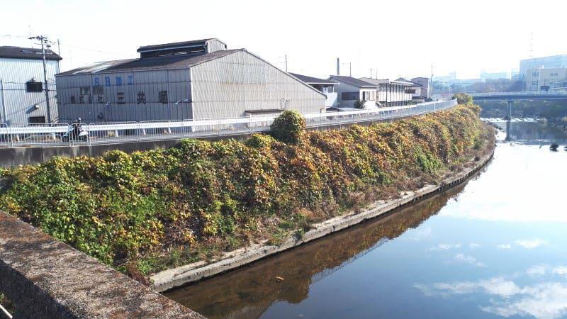 堺 石津川